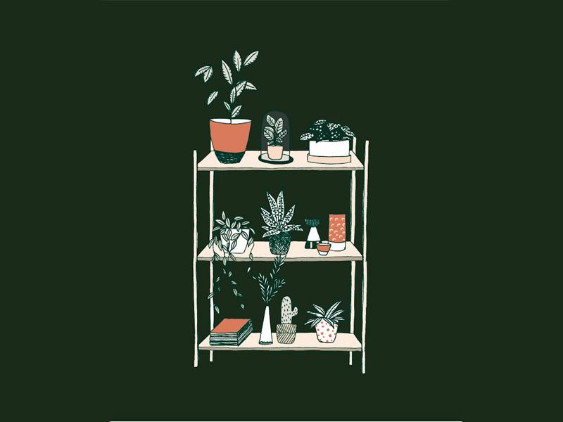 Larabispinck dribbble plants