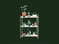 Botanical living