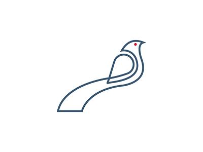 Monoline asiankoel bird minimal typography logos logoshape branding illustration design logo icon illustrator