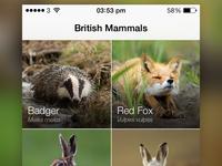 British Mammals (Grid View) - iOS 7 App