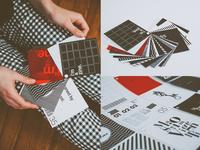 Massimo Vignelli 5 Typeface Zine