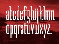 Homilia Font