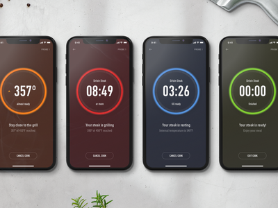 Weber — BBQ Grilling Stages design mobile iphone app food app dial bbq cooking food interface layout digital minimal ux ui smart device