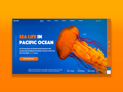 Sea Life Design