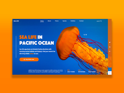 Sea Life Design adobe photoshop web ui ux branding website webdesign hero section hero image hero banner design adobe