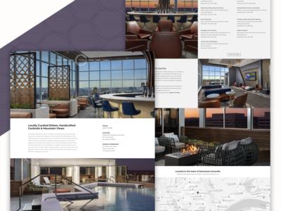 Radius Rooftop Lounge / Knoxville, TN - Website Design