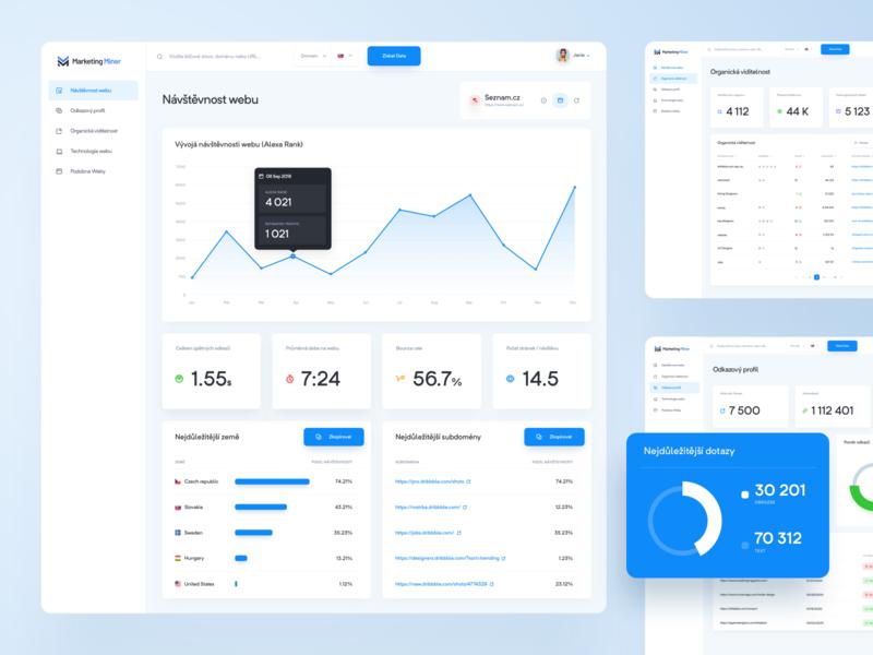 Marketing Miner Profiler analysis dashboad keywords marketing webapp homepage interface app uidesign website web ui interfacedesign design app seo design