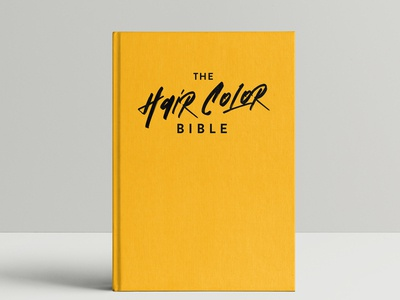 "Logo design ""the hair color bible"""
