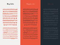 Big John PRO - Diacritics