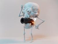 Cannon skull