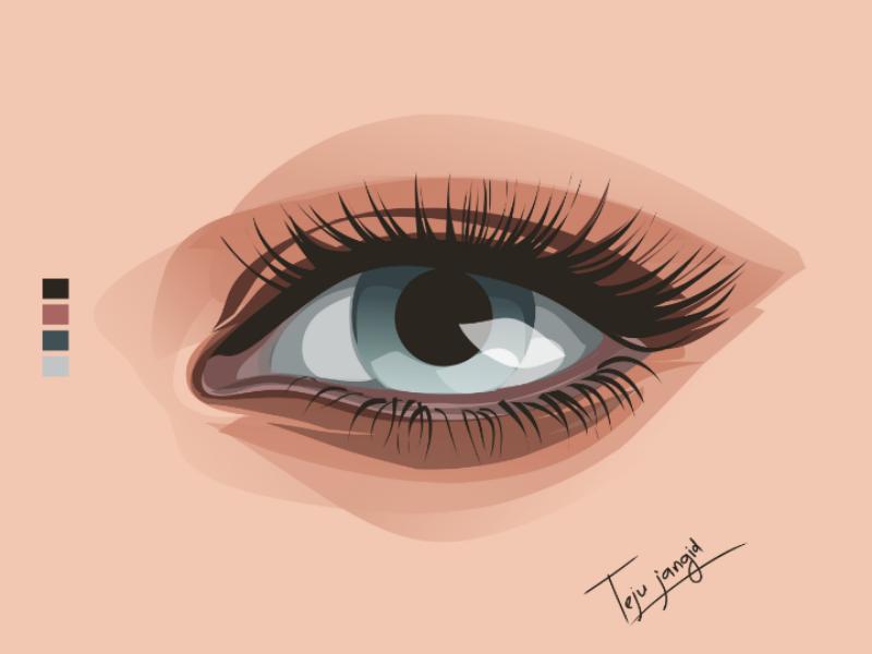 Vector eye eye design design illustration eye vector eyeball illustrator art vector eye