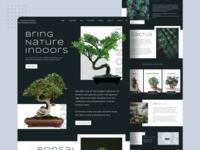 Plant Shop Website webdesigner plantshop cactus shop fresh green websitedesigns websitedesign plant plantwebsite succulent bonsai