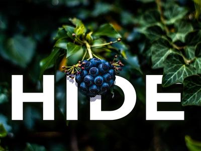 Hide Photoshop Editing