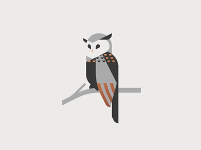 Night Owl flat owls bird owl design vector logo graphic minimal illustrator illustration