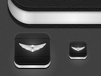 Pilot Pro Icons - Take 2
