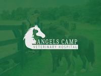 Angels Camp Veterinary Hospital
