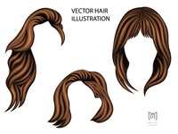 Vector Hair Illustration