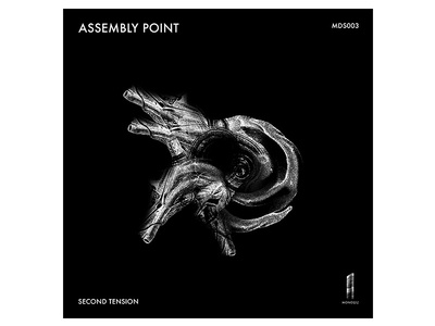 Album Art - Monolith Records graphicdesign techno music noise design dark coverart albumart cover album