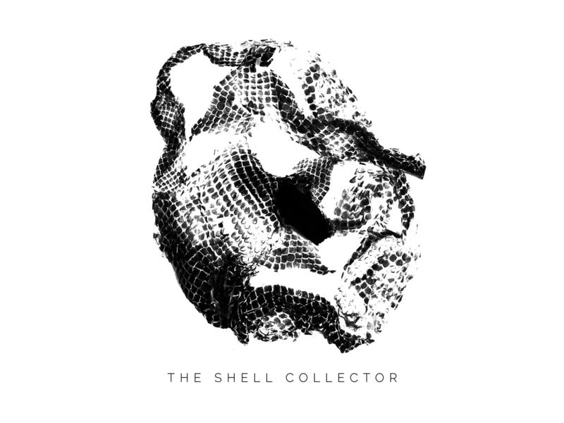 The Shell Collector Band Logo dark music logodesigns logodesign logo shell shellcollector snake snakeskin bandlogo band