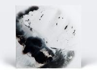 Memco - CR Vinyl 1