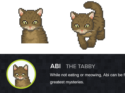 Abi — The Tabby identity creative agency head shot portrait avatar pixels pixelified who we are about us abi tabby tabby cat