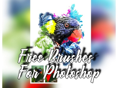 Brush Photoshop Free photoshop painting oil paint media mixed effects design creative sketch professional photo colorful brushes artistic art aquarelle actions acrylic abstract