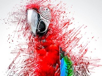 Color Pen Photoshop Action