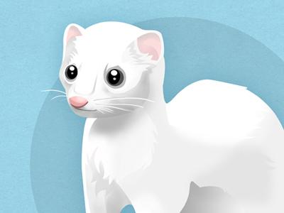 Hermine illustration animal mascot