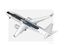 Airplane Cutaway