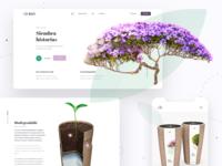 Kiri bio official website launch