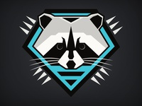 Forest Force: Raccoon
