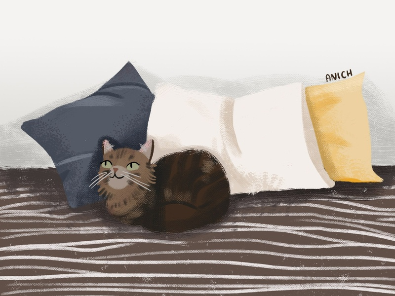 Cat on the bed cat illustration cat photoshop children illustration illustration illustrator