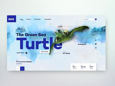 Online Sea-life Encyclopedia - [Concept] xd design website design webdesign ui design ui