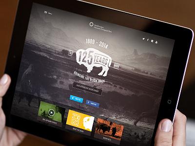 Smithsonian Zoo • 125 Years Bison smithsonian zoo bison landing page web interactive