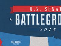 U.S. Senate Battleground type