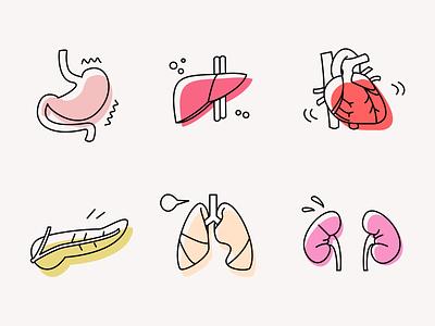 Human Organs vector illustration illustrator clean design app medical organ body human ui vectors icon set icon icons minimalist minimalism minimal