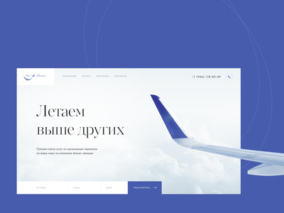 Sky Alliance - Landing page design creativity web homepage design private avia ui webdesign website landing page plane avia sky