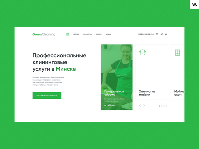 Cleaning Company Website Design ux design homepage cleaning green clean web webdesign landing page ui website