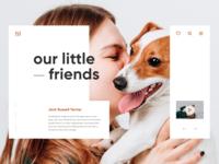 Daily UI Animals