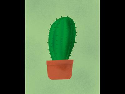 Cactus procreate apple pencil green cactus illustration plant illustration art