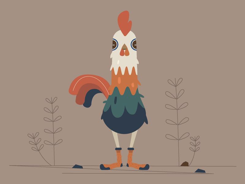 Rooster illustration sketch motion design motion kids design illustration animation