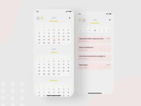 Skeumorphic  Calendar UI - Day & Month View