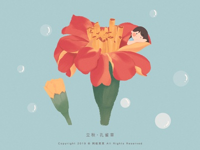 立秋 · 孔雀草