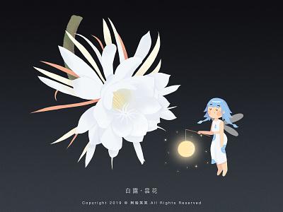 白露 · 昙花 flower cute girl illustration