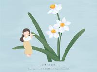 小寒 · 水仙花
