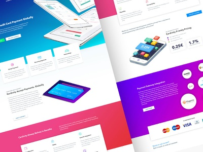 Cardinity Redesign clean minimal web design braintree payment redesign