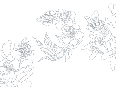 Line drawing of Bees and Flowers for Apicare cheyney mcdonnell drawings flowers illustration line art design by cheyney new zealand apicare apicare flowers bees hand drawn drawing minimalistic minimal illustrator illustration vector design