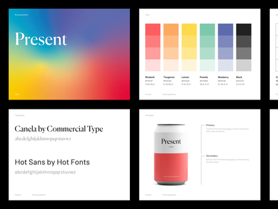 Present — Brand guidelines visual identity art direction exploration logotype logo design illustration minimal website minimalism animated typography figma sketch styleguide colorful brand branding design branding