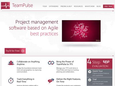 TeamPulse Web Site Proposal