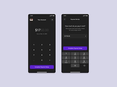 Payment Set Up payment app rent dial ios mobile payment